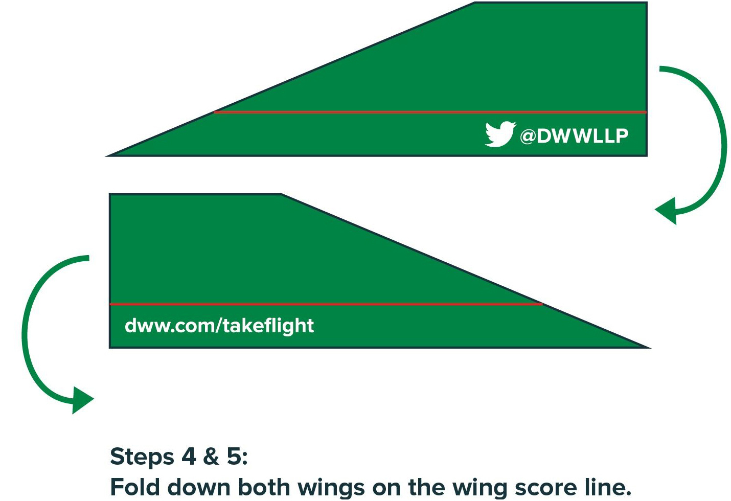 Steps 4 & 5: Fold down both wings on the wing score line.